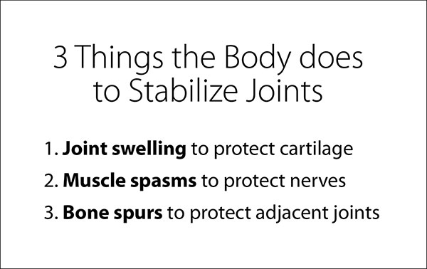 3 things the body does to stabilize joints