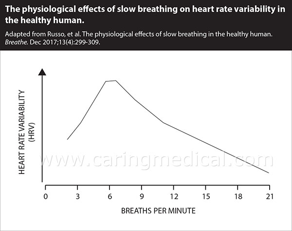The physiological effects of slow breathing on heart rate variability in the healthy human